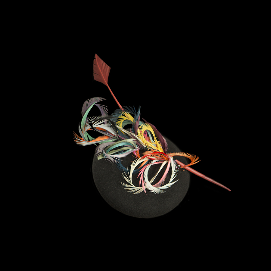 Multicolour Feather