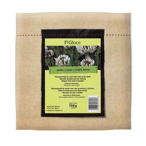 Semences pure trèfle blanc enrobé (4.4 lbs)