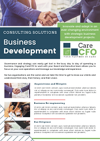 THUMB - Consulting Flyer - BD.png