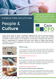 THUMB - Consulting Flyer - P+C.png