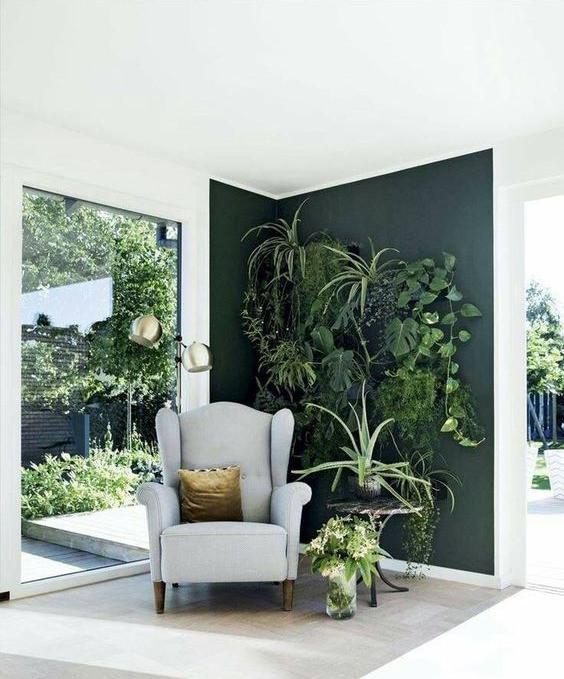 Seinä on maalattu havunvihreällä ja siihen on kiinnitetty runsaasti viherkasveja.