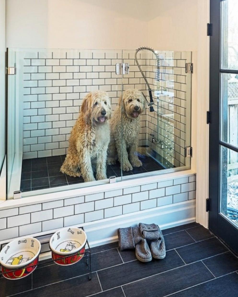 Kodinhoitohuoneen ulko-oven viereen on rakennettu koirien pesupiste. Se on muuta lattiaa korkeammalla, jolloin peseminen on helpompaa. Lasiset portit pitävät koirat suihkussa.