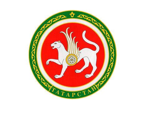 герб гс татарстан.jpg