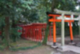 Inari Jinja: Torii   稲荷神社鳥居