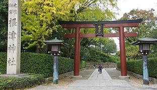 Nezu Jinja  根津神社
