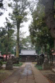 Hikawa Jinja, Saitama, Fujimino  簸川神社 埼玉県ふじみ野市