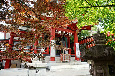 Chanoki Inari Jinja  茶の木稲荷神社