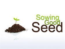 sowingseed.jpg