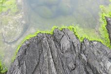 green edge.jpg