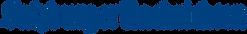 Salzburger_Nachrichten_Logo.png