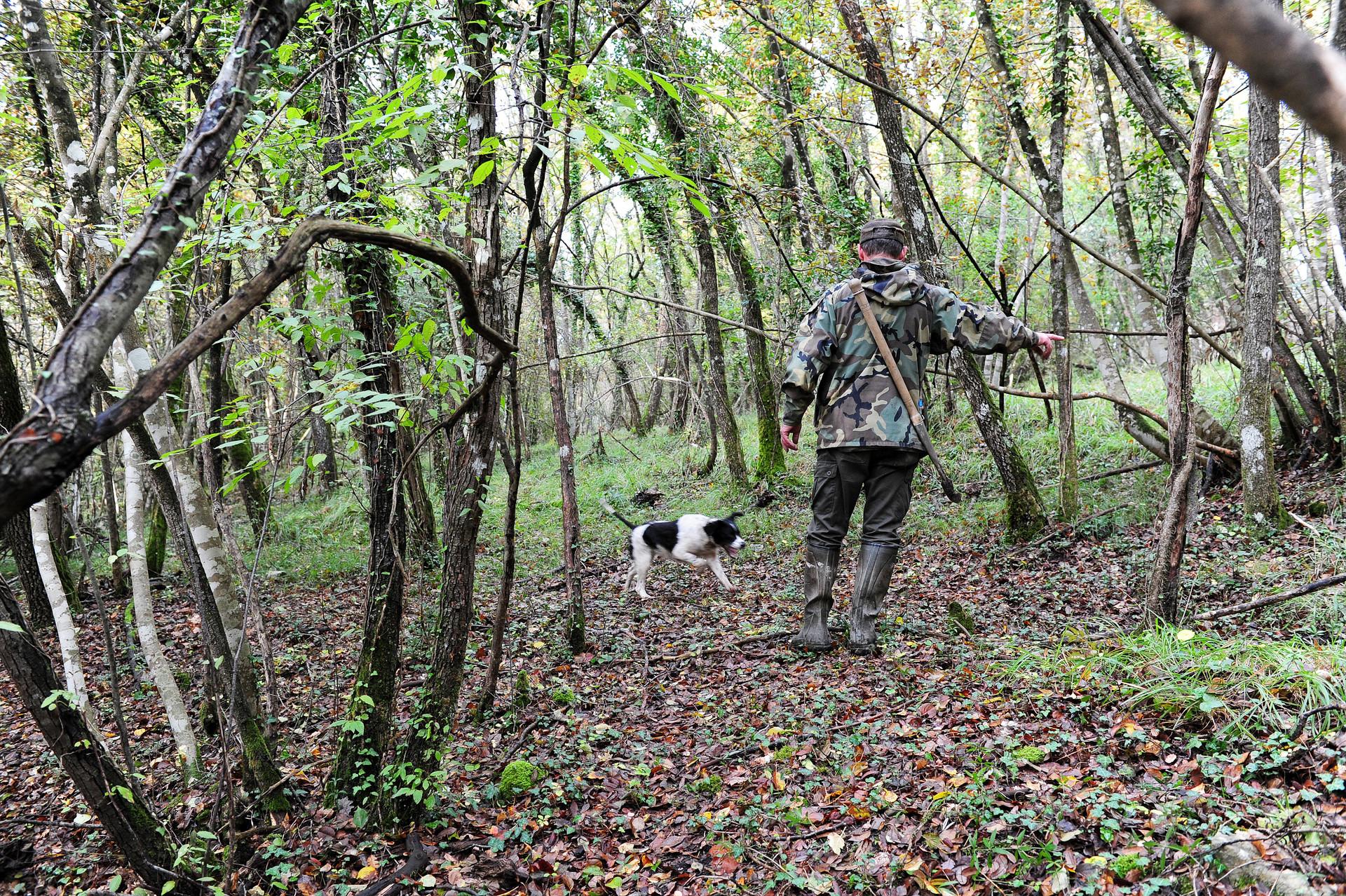 Truffle hunt030_6989.jpg