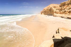 Torrey-pines-beach.jpg