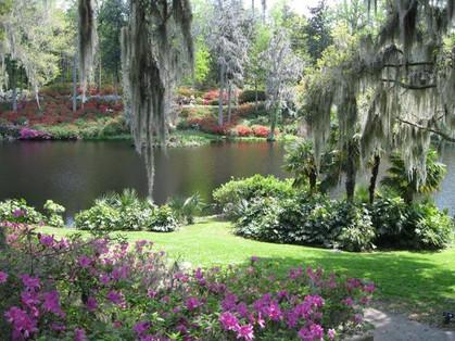 inn-at-middleton-place-pond.jpg