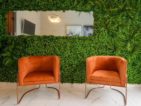 Veja como fazer uma parede verde e traga a natureza para sua casa.