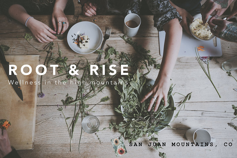 Root & Rise