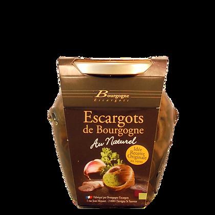 Escargot di Borgogna 24 pz. vaso di vetro