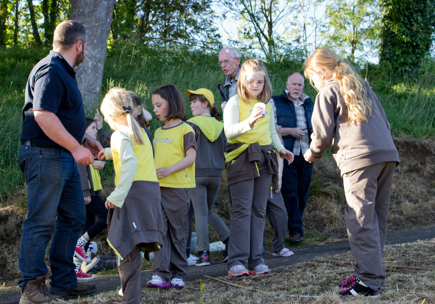 Dalgety Bay Brownies getting seed