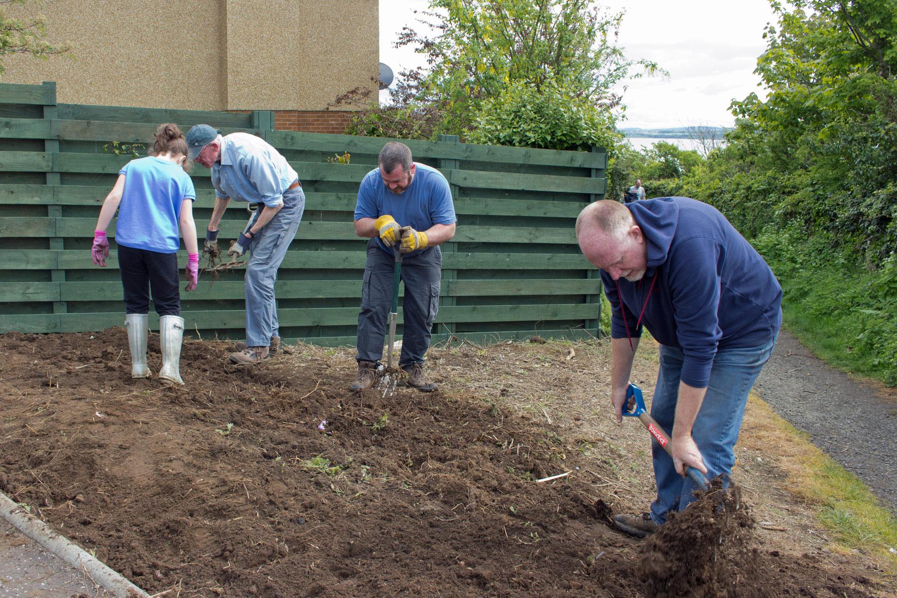 Digging over 11 May