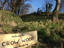 crow wood sign.jpg