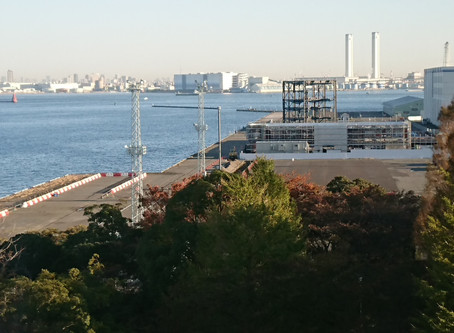 IR誘致手続き延期を受け、横浜市民の会は延期ではなく中止を訴える声明を発表