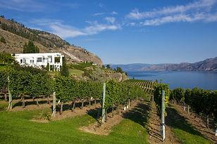 Oak Estate Winery Villa