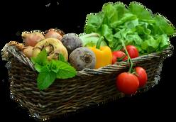 Gemüsekorb_ausgeschnitten.png