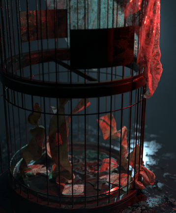 BIRD_CAGE_1.1.png
