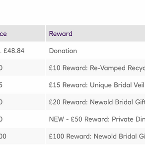 Newold Bridal: Successful Crowdfunder