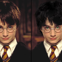 What the Harry Potter Characters Look Like Based on the Books