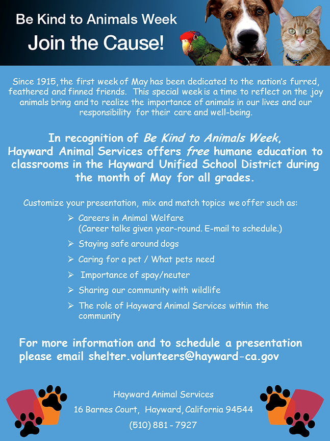 Be Kind to Animals Flyer for elementary