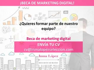 Beca Marketing Digital