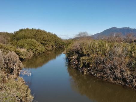 桜川をまたぐ『太田橋』