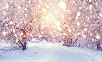 WinterludeElopement_backdrop.png