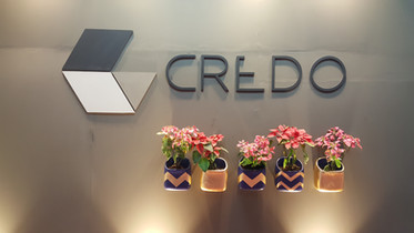 This Festival, Decorate your Home & Office with Credo Planters