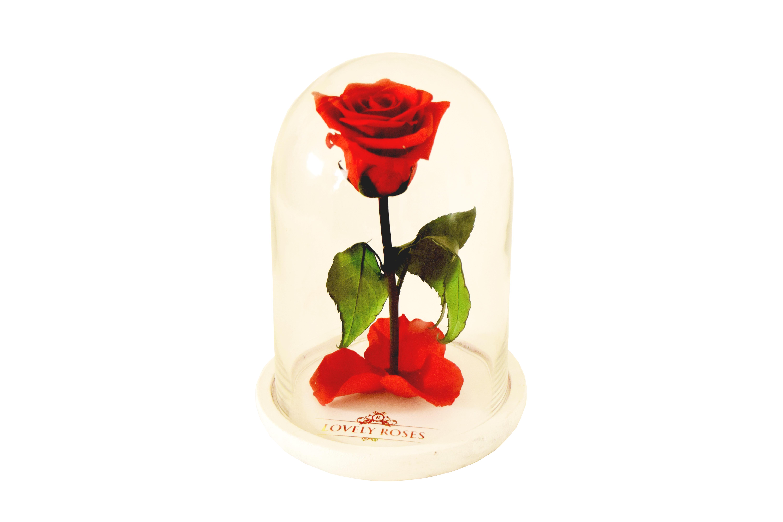 ENCHANTED ROSE CRISTAL BOX v 2