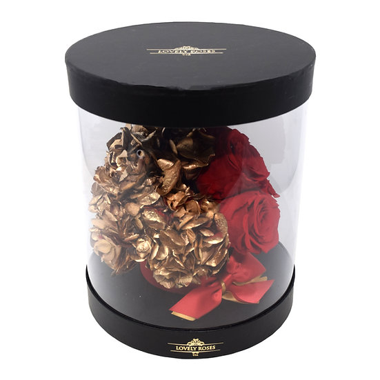 Black Round Clear Box - Red Preserved Roses (Mix Gold Flowers)