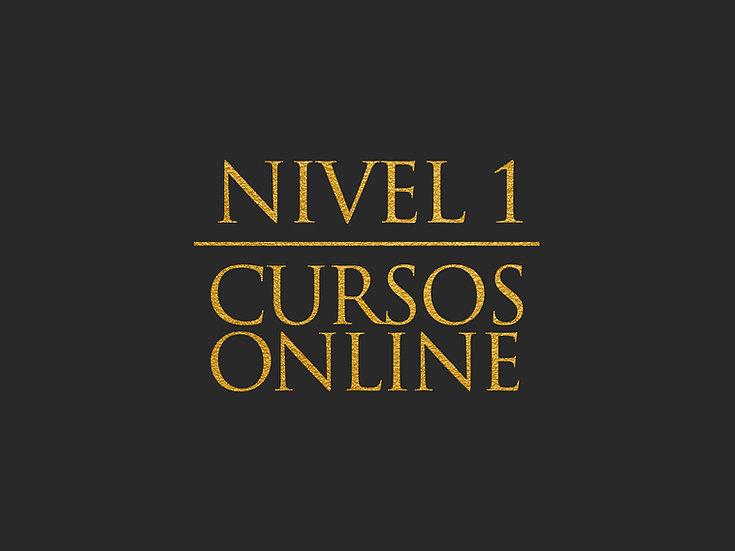 NIVEL 1 - CURSOS ONLINE
