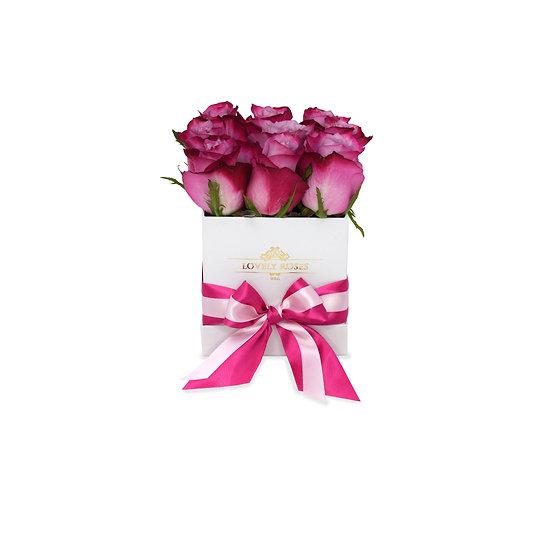 Small Square Purple Bi Color Natural Roses/ONLY IN MIAMI