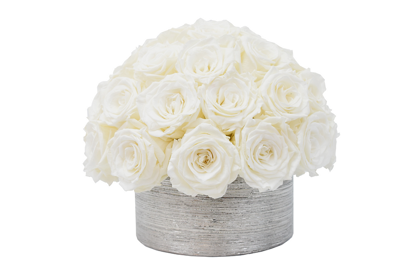 Super Deluxe White Preserved Roses