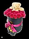 Preserved Roses   Lovely Roses   United States