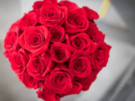 Why Are Red Roses a Symbol of Love?