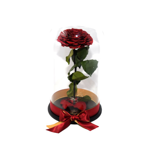 Beauty And The Beast Collection Preserved Roses In A Glass Dome