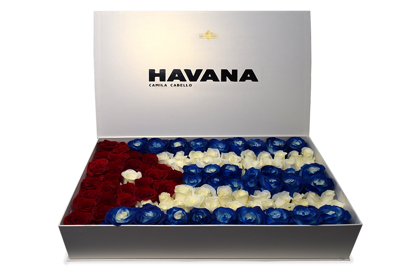 Havana Celebrity Box Natural Roses (Sample)/DELIVERY ONLY IN MIAMI