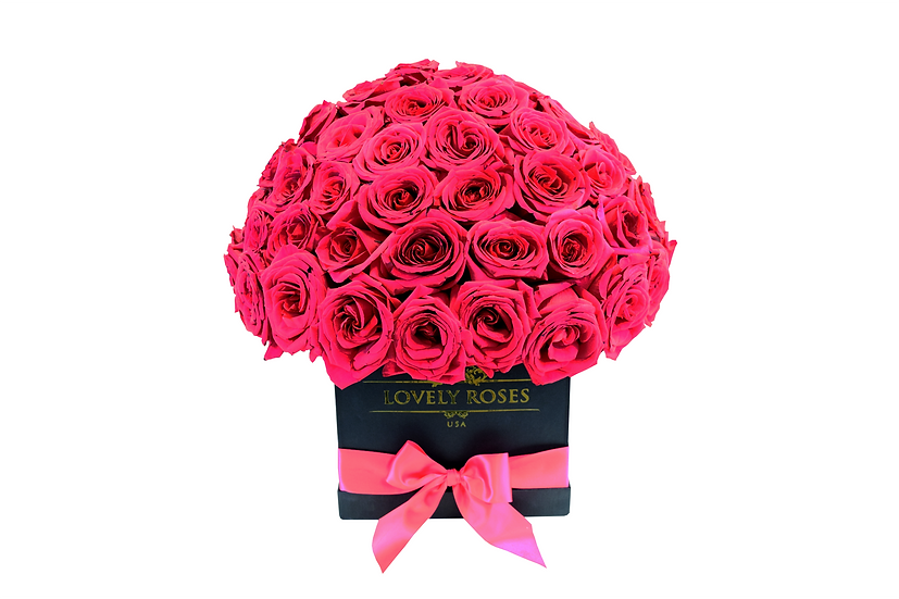 Large Super Deluxe  Natural Fuchsia Roses/ONLY IN MIAMI
