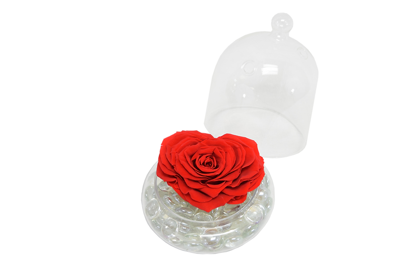 Heart Shape One Love Preserved Rose (Only Miami)