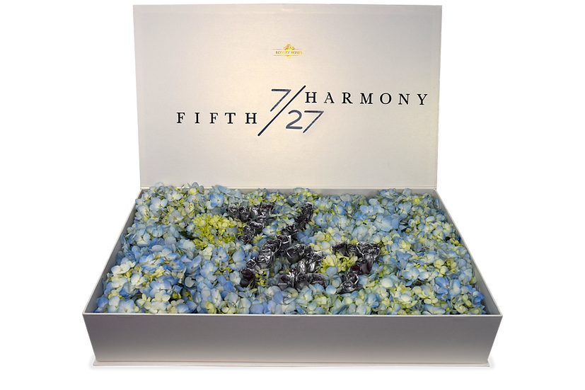 Fifth Harmony Hydrangea Celebrity Box (Sample)/DELIVERY ONLY IN MIAMI