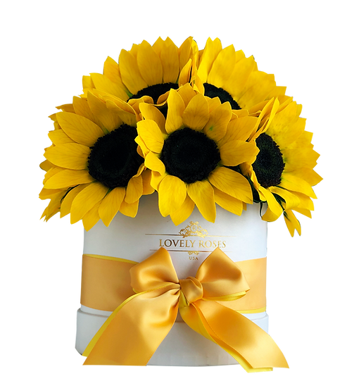 Deluxe Box of Preserved Sunflowers