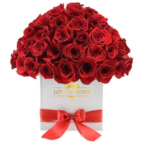Super Deluxe Red Natural Roses/ONLY IN MIAMI