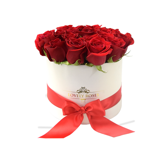 Medium Round Natural Red Roses/ONLY IN MIAMI