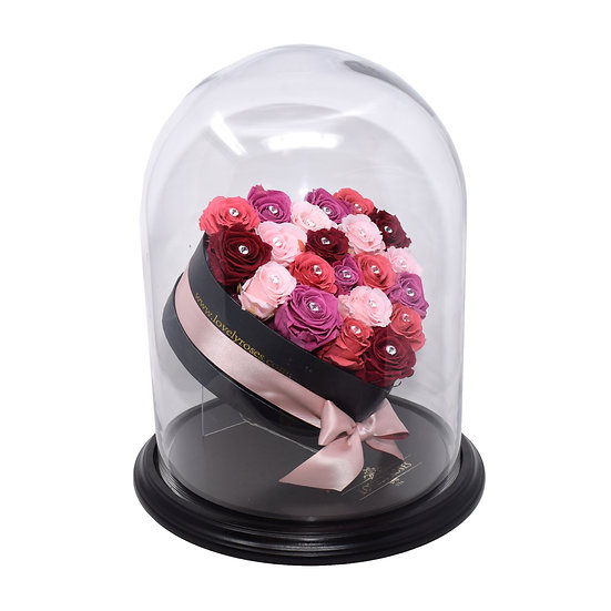 Crystal Dome Pastel Colors Rainbow Preserved Roses